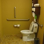 Grab bars by toilet in accessible room.
