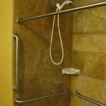Grab bars in roll-in shower, with moveable shower head