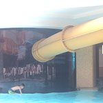Shark tank is a rather sweet pool and the slide through the tank is awesome! I've had better cus