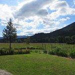 Cedar Mountain Farm Bed and Breakfast Foto