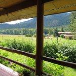Foto de Cedar Mountain Farm Bed and Breakfast