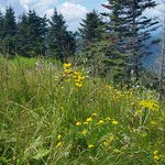 Photo de Mount Equinox