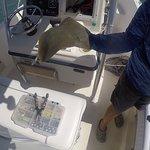 Foto de Catch-1 Charters - Capt. Shannon's Fishing Charters