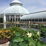 Photo de New York Botanical Garden