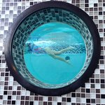 Снимок Rumba Beach Resort
