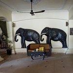 Foto di Terrasse des Elephants