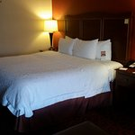 Hampton Inn St. George Picture