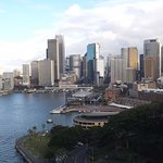 Sydney Harbour during the day