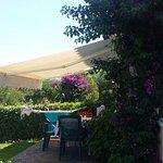Foto de Villaggio Eucalyptus