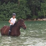 Photo de Phuket International Horse Club