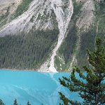 Photo of Peyto Lake