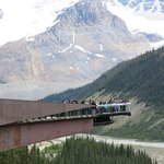 Columbia Icefield Glacier Adventure Foto