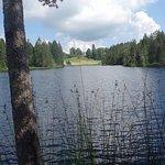 L'étang de la Gruère
