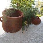 Фотография Paphos Gardens Holiday Resort