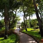 Iberostar Hacienda Dominicus Foto