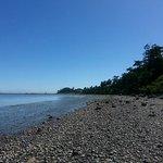Beach below Dungeness Bay Cottages