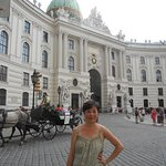 Historic Center of Vienna - Horse Drawn Carriages