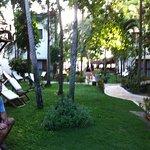 Foto de My Blue Hotel