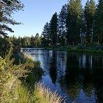 Foto de Collier Memorial State Park