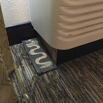 Candlewood Suites Atlanta West I-20 Foto