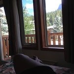 Spruce Grove Inn Foto