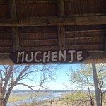 Foto de Muchenje Safari Lodge