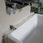 Dirt sink in shared bathroom