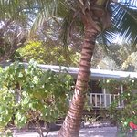 Miller's Landing Resort Photo
