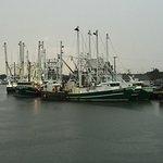 JJC Boats Inc. Foto