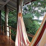 hammocks in cabin 4