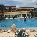 Photo of Luxury Bahia Principe Akumal Don Pablo Collection