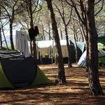 Foto de Camping Bungalow Pedra e Cupa