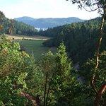 Blick aus dem Garten der Fernhill Suite auf die Insel