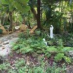 Foto de Sivananda Ashram Yoga Retreat