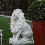 Lion's Garden Hotel Foto