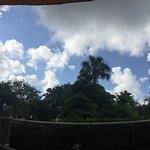 Adventure Island Foto