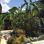 Photo of Paradise Garden Apartments