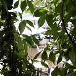 vue du balcon, très très proche des tables du restaurant