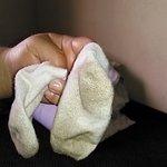My sons socks after walking on the nasty carpeting @ Hampton Inn Pensacola Beach