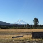 View of Mount Ranier from rear parking lot