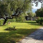 Photo de Villaggio degli Olivi
