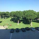 Parking y jardines