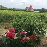 Terasse mit Blick auf Rhein