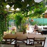 Terrasse ombragée sousla vigne
