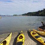 Island Escapades Kayaking