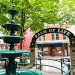 Downtown Basin Spring Park