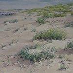 strandlandschap Westerschouwen