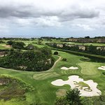 Green monkey golf course