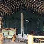 Фотография Kibo Safari Camp