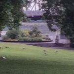 Foto de Parque Washington